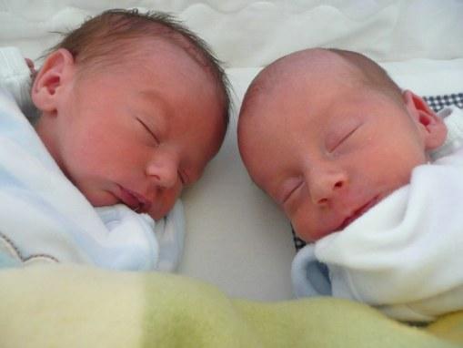 Max und Timo