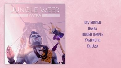 Photo of Jungle Weed – Yatra  [FULL EP – ODGP176]