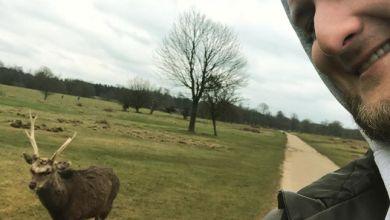 Photo of Ustawka z ziomeczkiem?.  #uk  #sevenoaks…
