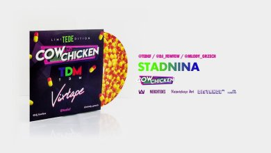 Photo of TEDE FEAT. COW & CHICKEN – STADNINA / TDM VIXTAPE
