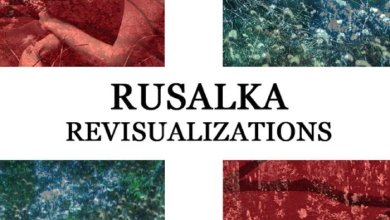 Photo of Revisualizations, by Rusalka