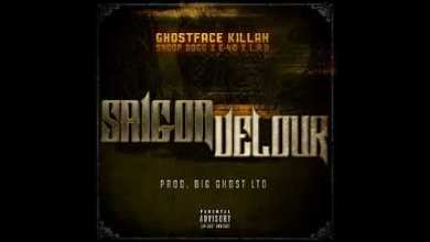 Photo of Ghostface Killah – Saigon Velour feat. Snoop Dogg, E-40 & LA The Darkman
