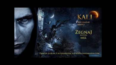 Photo of 12. Kali – Żegnaj (prod. MKL)