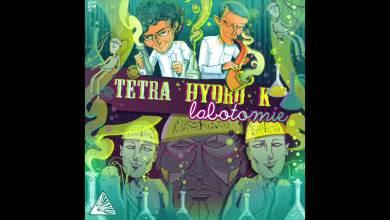 Photo of Tetra Hydro K – Tetra Hydro Kamasutra – Labotomie