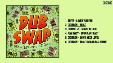 Photo of Brainless meets Digitron – Dub Swap [Full EP]