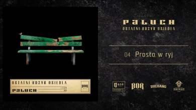 """Photo of Paluch """"Prosto w ryj"""" prod. The Returners"""