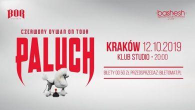 Photo of Paluch • Czerwony Dywan • Kraków 12.10.2019