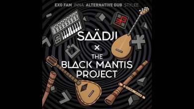 Photo of The Black Mantis Project – Stellar Waves (Saadji Remix)