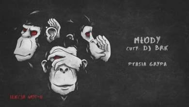 Photo of Młody – Ptasia grypa | LEKCJA WOS-U