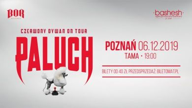 Photo of Paluch • Czerwony Dywan • Poznań 06.12.2019 SOLD OUT