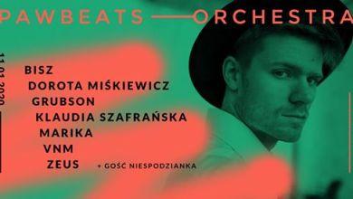 Photo of Pawbeats Orchestra   Gdańsk