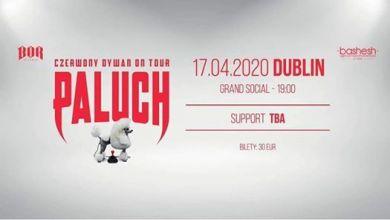 """Photo of Paluch """"Czerwony Dywan"""" Dublin 17.04.2020"""