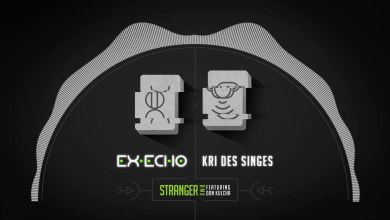 Photo of Ex-Echo x Kri Des Singes – Stranger Remix feat. Don Kulcha