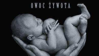 Photo of Nizioł ft. Żabol $zajka, Profus PPZ – Gniew emigranta