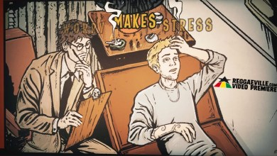 Photo of Wicked and Bonny feat. Tom Spirals – Stress Makes Me Worry [Official Lyric Video 2020]