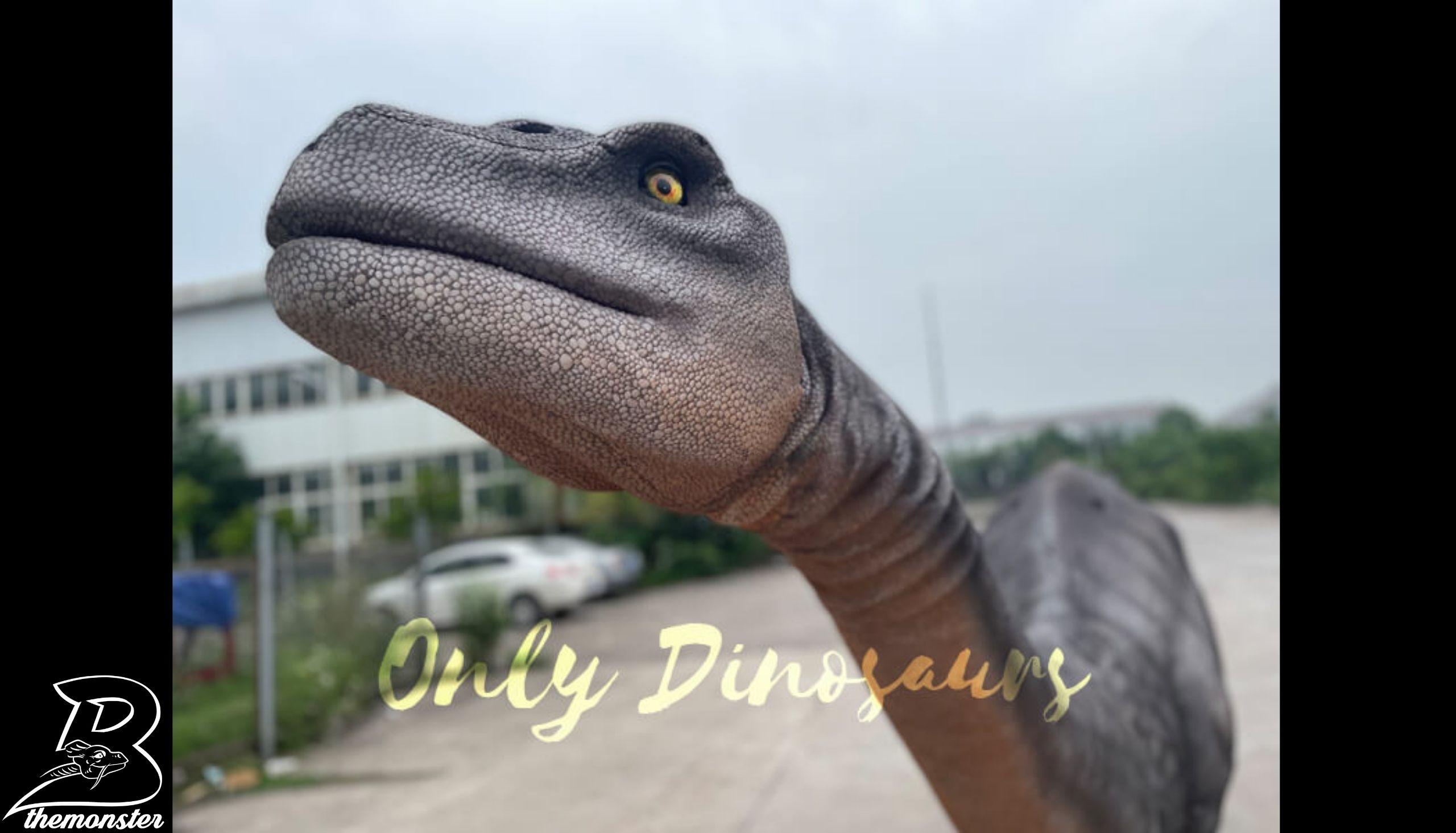Realistic Two-Person Brontosaurus Dinosaur Costume in vendita sul Bthemonster.com