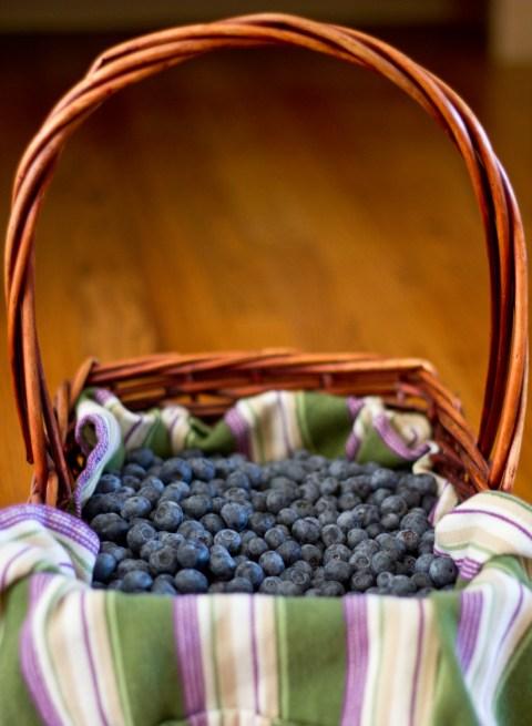 basket full of blue beauty