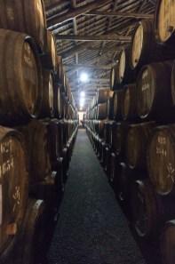 Portweinfässer bei Taylor's, Porto