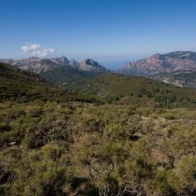 Maccia, Korsika