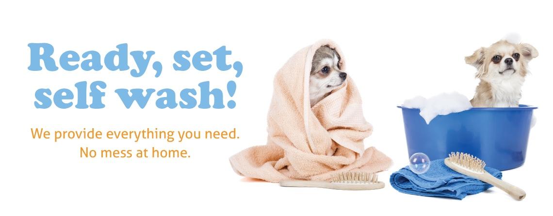Self Wash