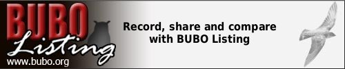 Record, share and compare with BUBO Listing at www.bubo.org