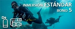 Inmersión ESTÁNDAR - Bono 5