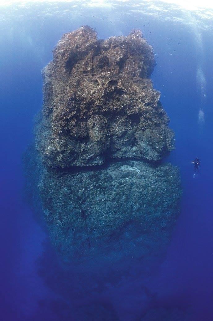 Inmersión Baja Bocarones