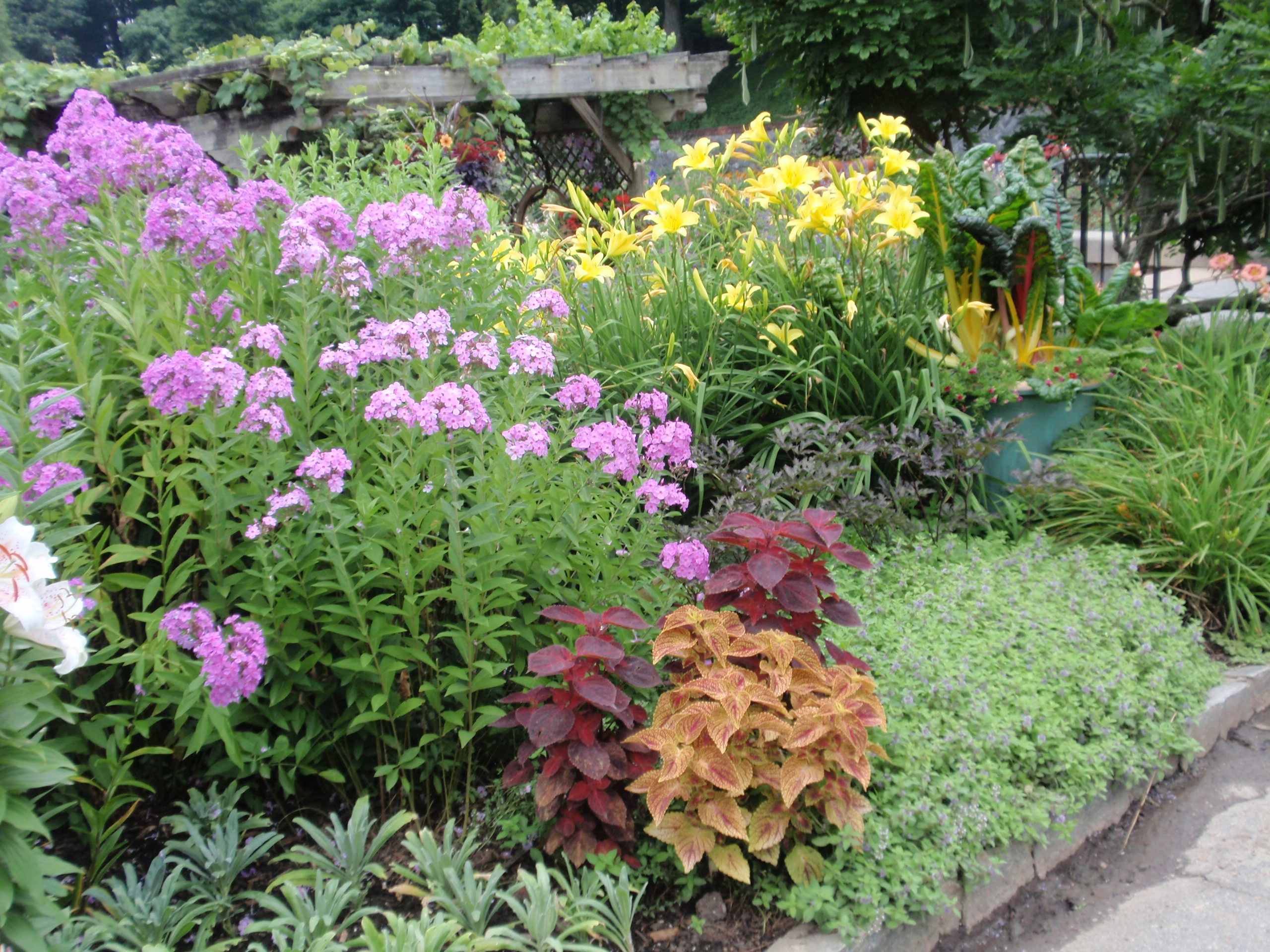How To Turn Your Landscape In To A Cutting Garden