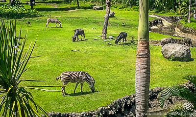 Stay in a zoo hotel - Bucket List