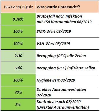 amm 2021 - Untersuchung