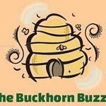 buzzer logosmall