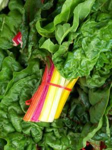 Rainbow Swiss Chard; photo by L. Goldman