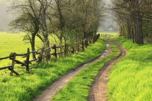 Farm road; MSClipArt