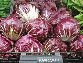 Radicchio. Photo courtesy http://italyonmymind.com.au