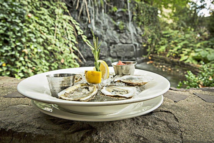 Fresh oysters? Here?