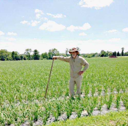 Jim Lyons, Blue Moon Acres in rice field; photo credit Lynne Goldman