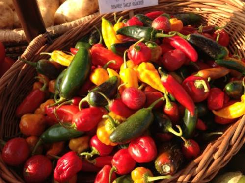 Hot peppers from Blooming Glen Farm; photo credit Lynne Goldman
