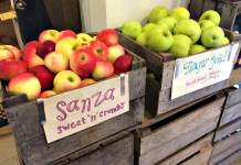 Manoff Market Gardens Apples
