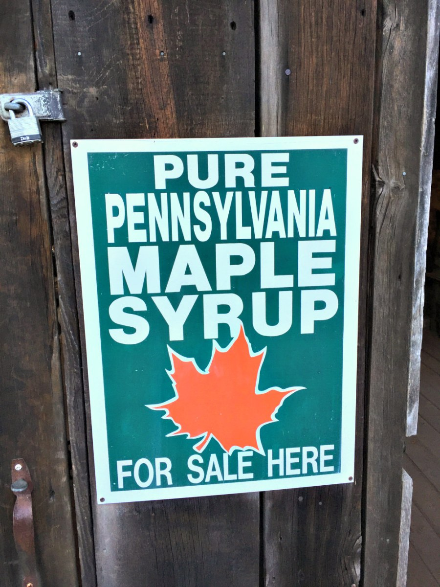Bucks County maple syrup!
