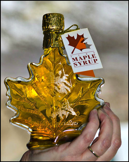 Maple syrup season in Pennsylvania 2017
