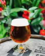 Summerbock craft beer