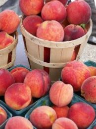 Peaches from Solly's Farm