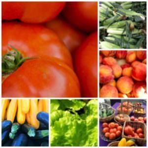 Bucks County summer produce