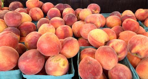 Shady Brook Farm peaches