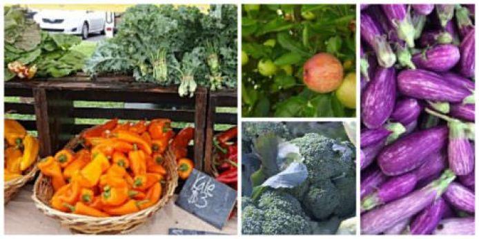 Farmers market produce in Bucks
