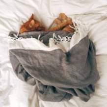 cat cuddled up