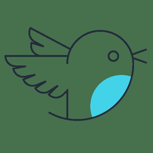 twitter-gestion-de-redes-