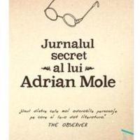 Jurnalul secret al lui Adrian Mole, o carte cu un umor nebun