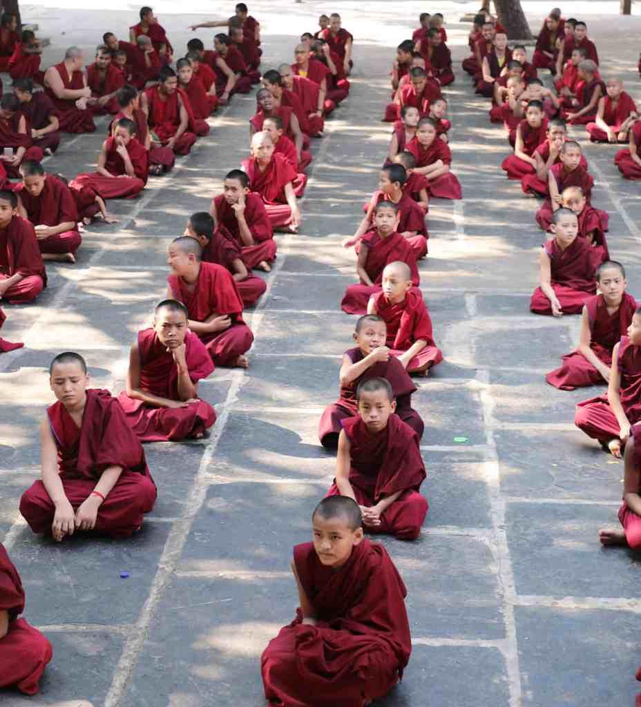 Children Monks in the 25years colaboration Pneuma Institute Gaden Shartse