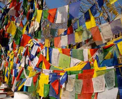 Tibetan Flags Buddha Maitreya Project